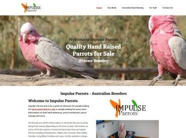 Impulse Parrots website development by Impulse Impressions